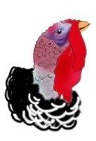 turkey bird for thanksgiving