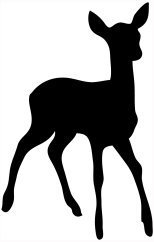 silhouette of young deer