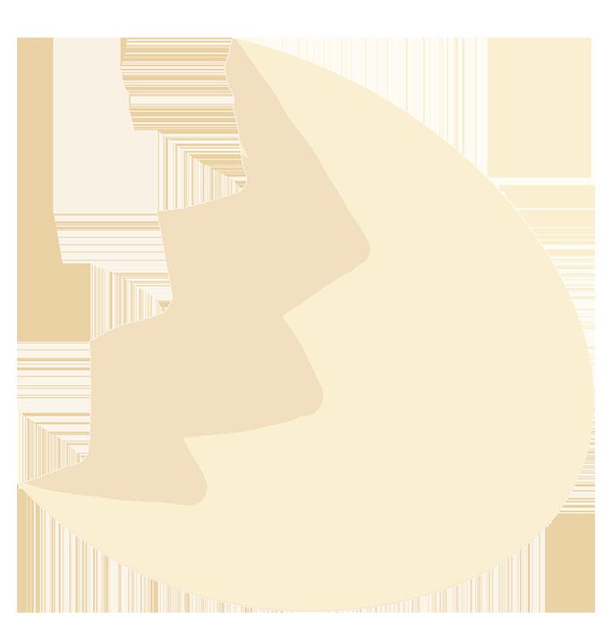 broken egg shell
