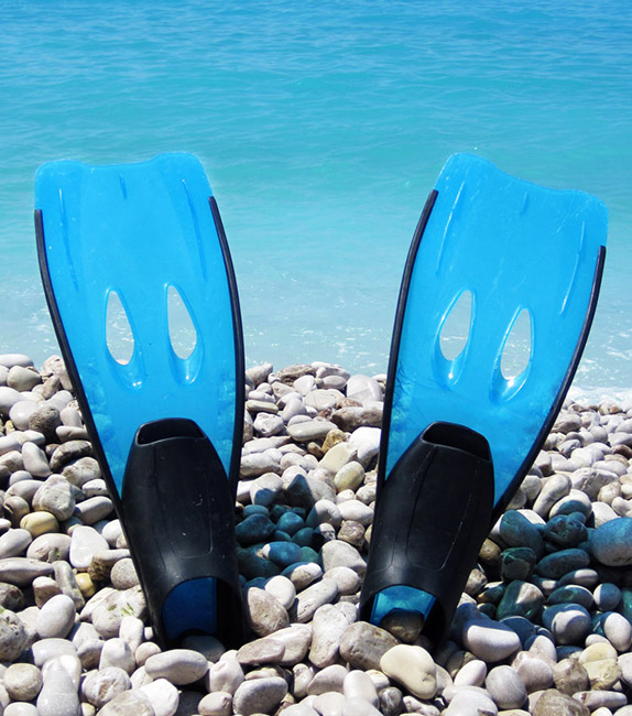 flippers on the stone beach