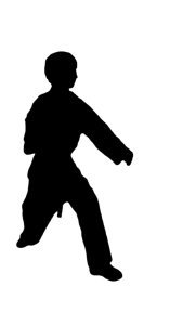 silhouette of karate position