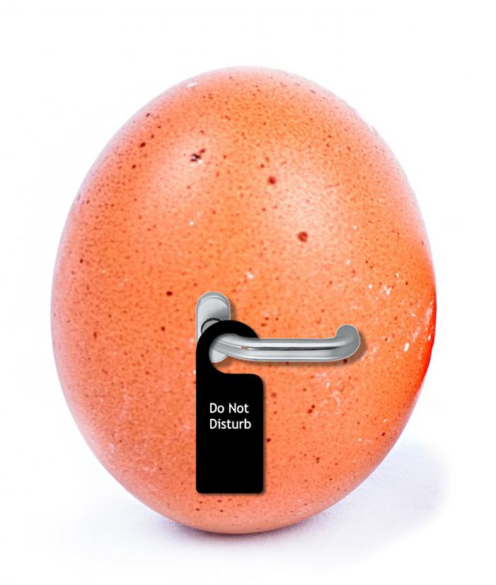 Easter Clip art do not disturb egg