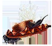 ladies dress hat fashion 19th century