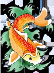 cool koi fish drawings