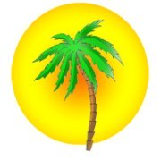 Beach party palm sun clipart
