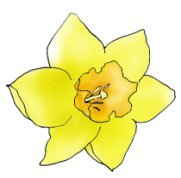 spring clipart daffodil