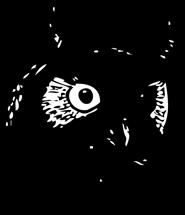 owl clip art face of owl