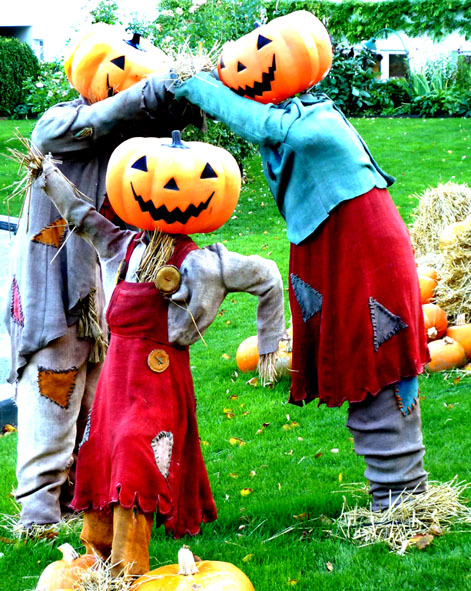 halloween pictures playing pumpkin people