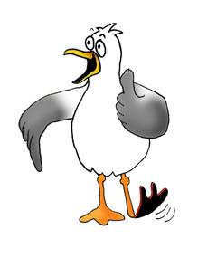 cartoon drawings of animals sea gull