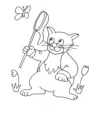 cat hunting butterfly sketch