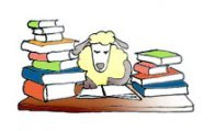 cartoon drawings of animals sheep eksamination