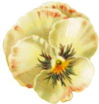 wedding clipart single flower