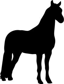 silhouette of beautiful standing horse