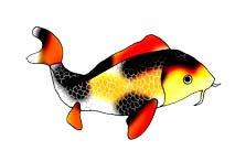 koi fish clip art