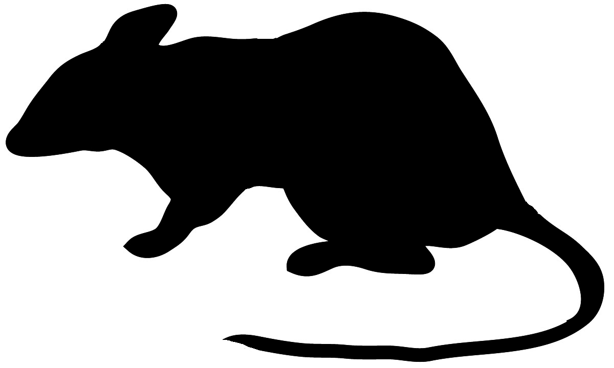 silhouette of mouse with long tail