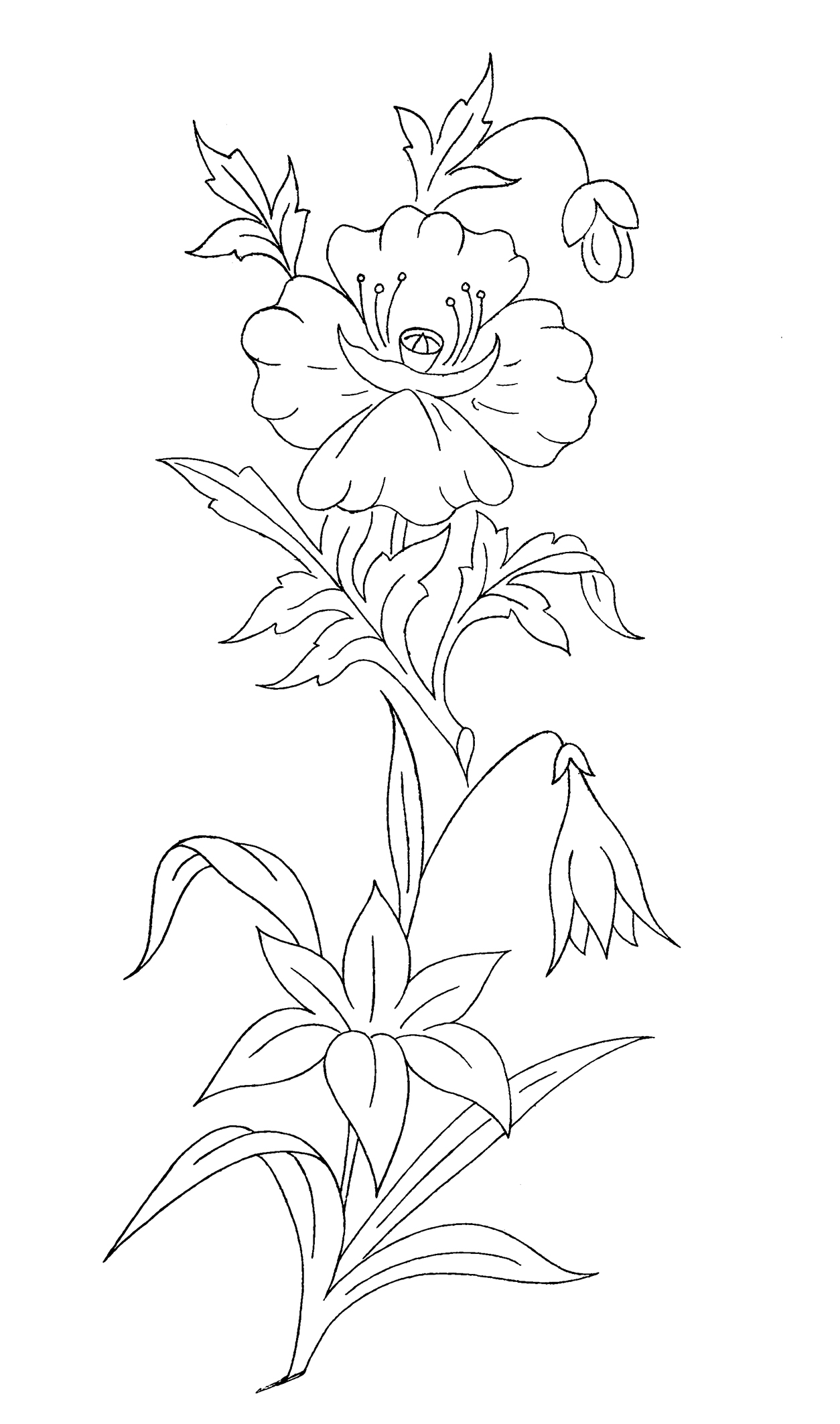 coloring sheet with different flowers