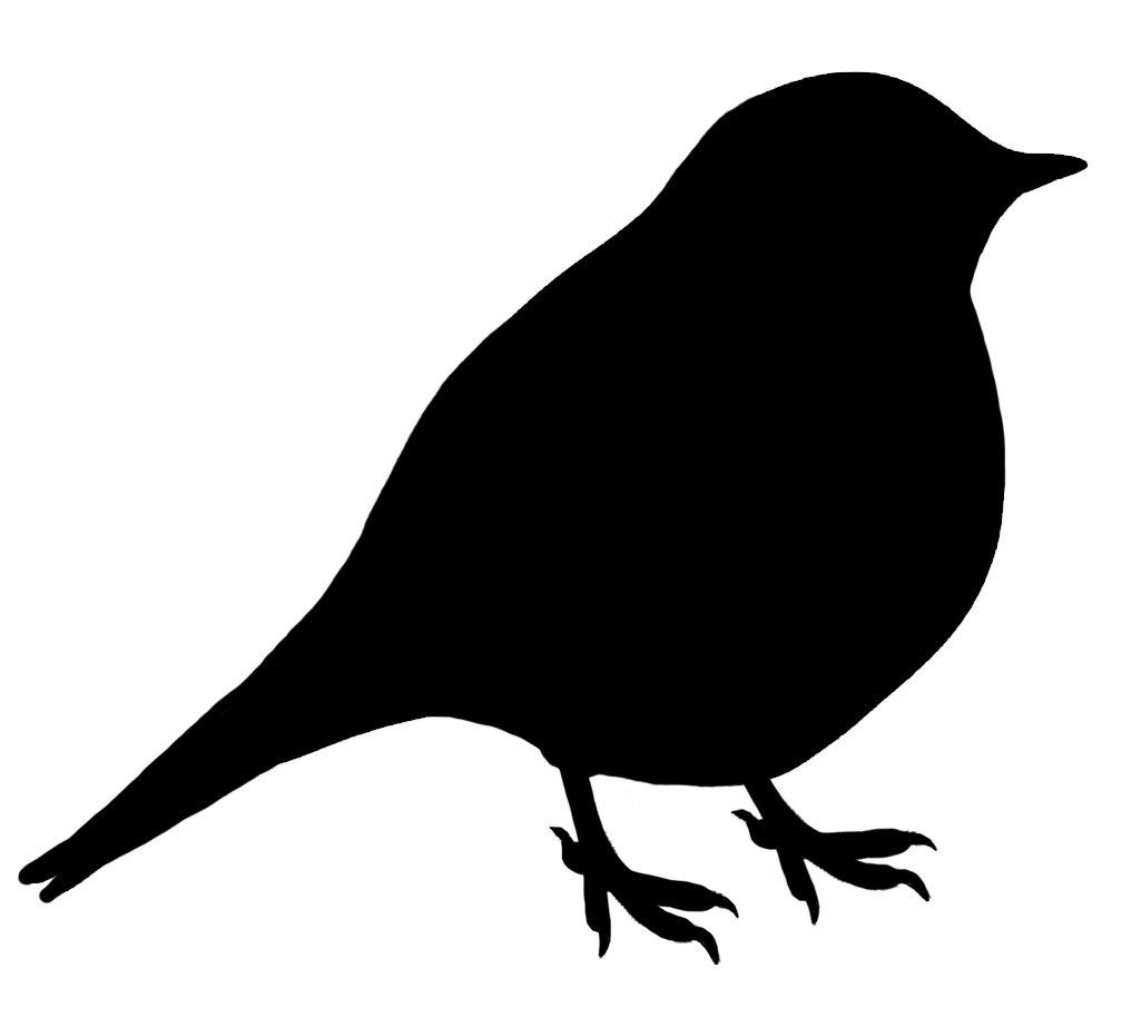 small black silhouette of bird