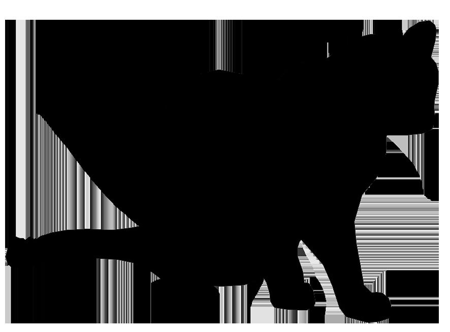 cat silhouette sitting