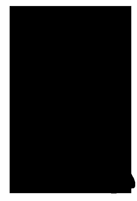 bird-on-branch-silhouette