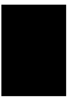 Victorian silhouette profile woman