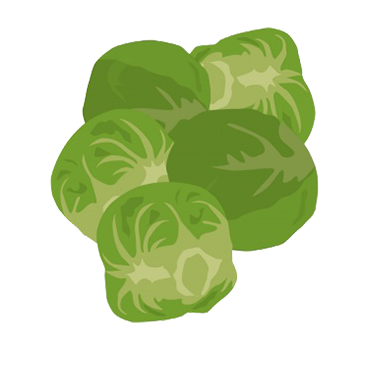 Brussel sprouts clipart