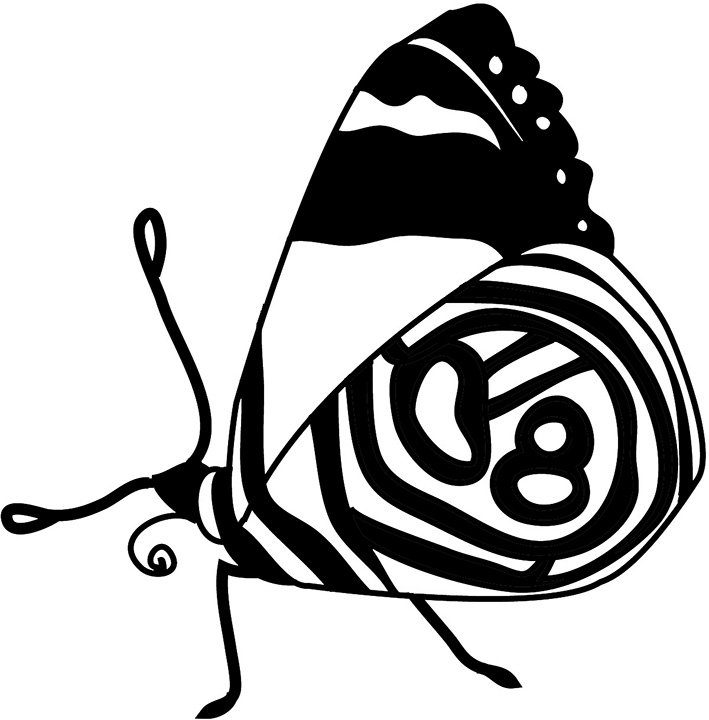 resting butterfly black white