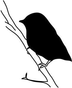 bird silhouette small bird on branch