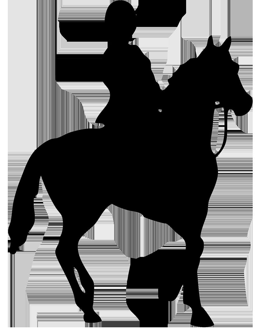 black silhouette of horse rider