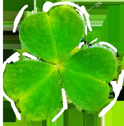 leaf of shamrock for st. Patrick's Day