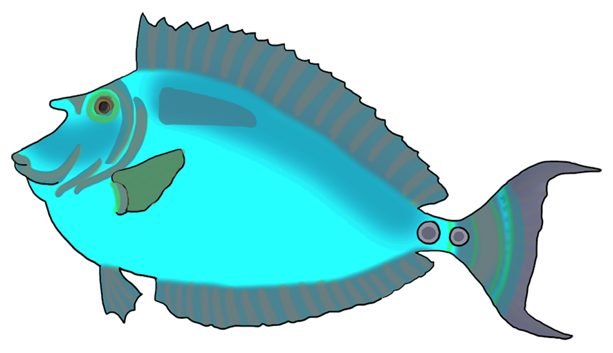 colorful blue green fish