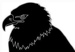 Head of eagle in silhouette