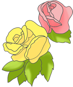 Pink and yellow rose clipart