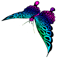 strange colored butterfly image