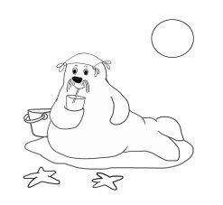 summer coloring sheet with walrus