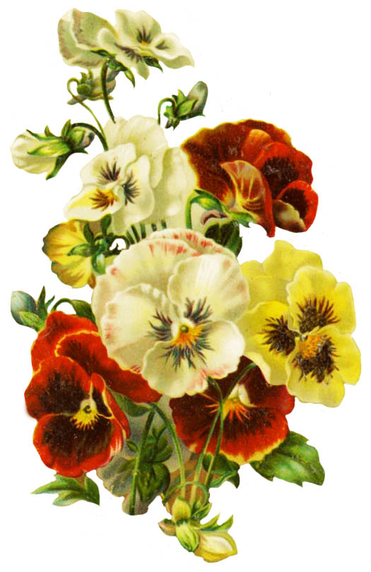 bouquet with pansy for wedding invitation