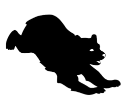 silhouette of jumping bear
