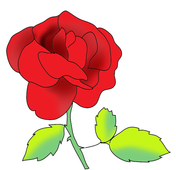 flower image gallery red rose
