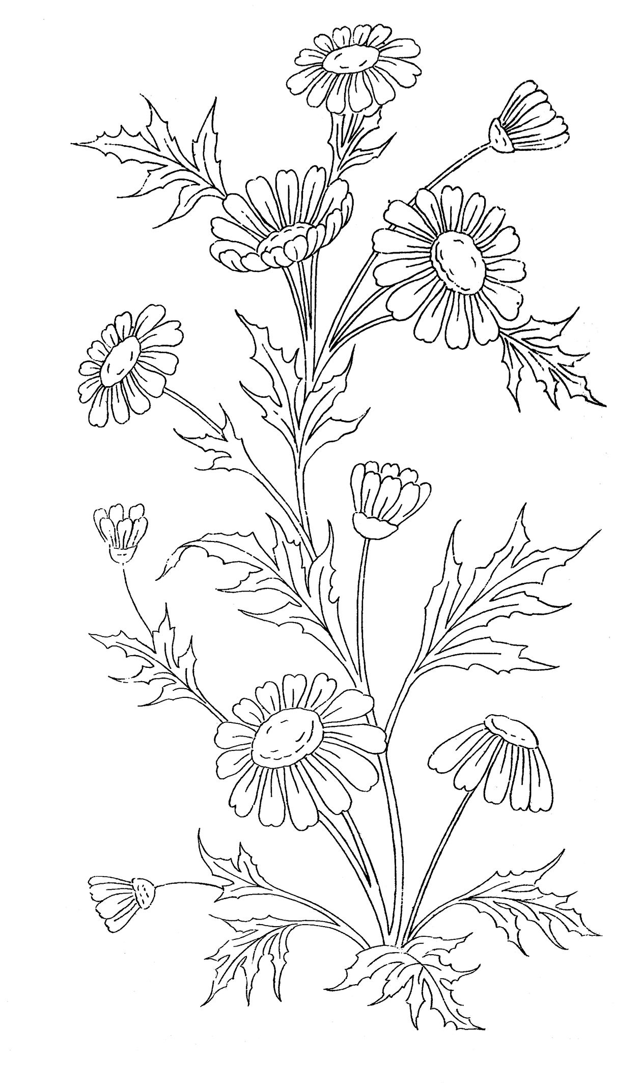 coloring sheet with flowers