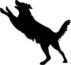 dog silhouette jumping