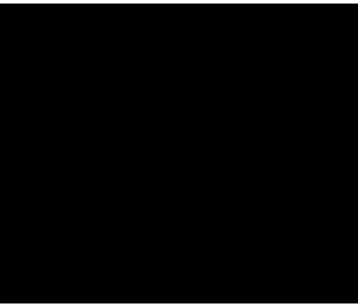 Silhouette of small bird