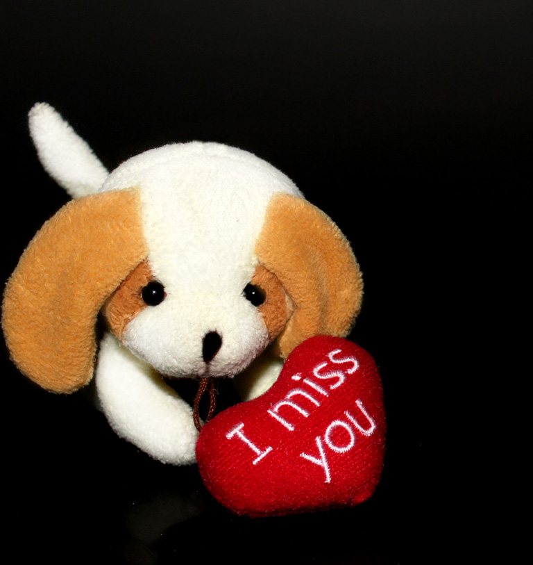 i miss you greeting for Valentines Day