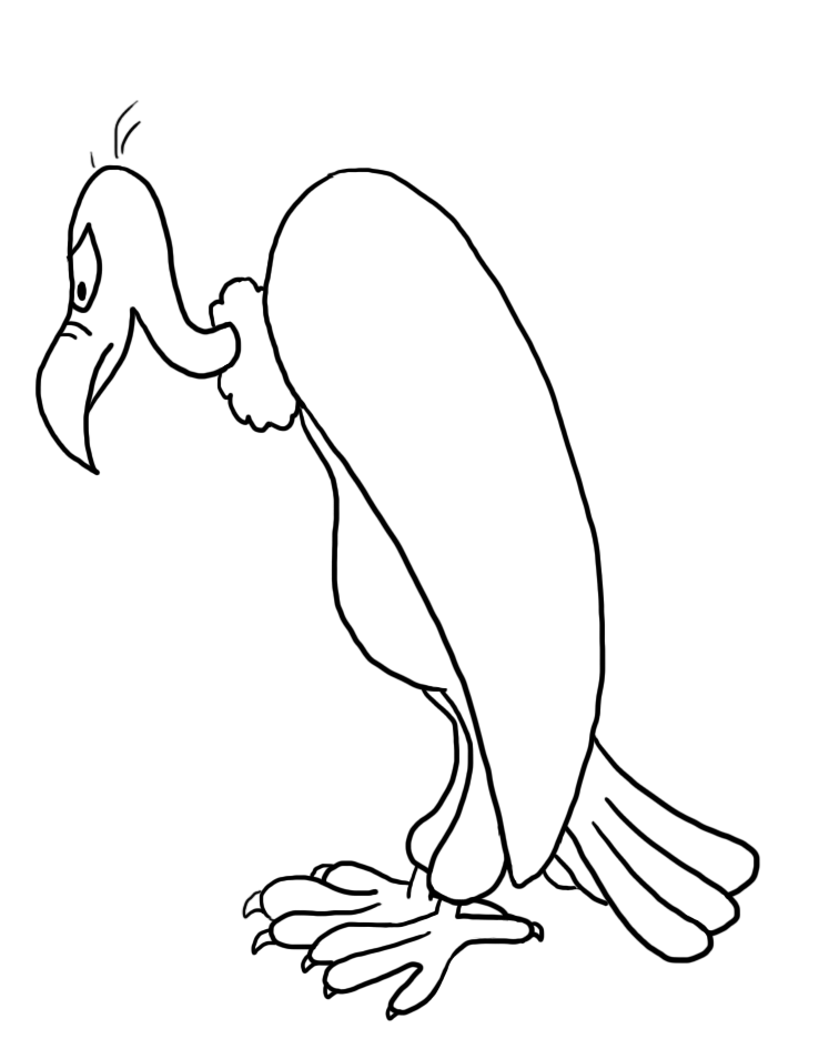 outline silhouette of vulture