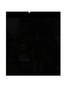 Santa Claus silhouette of head