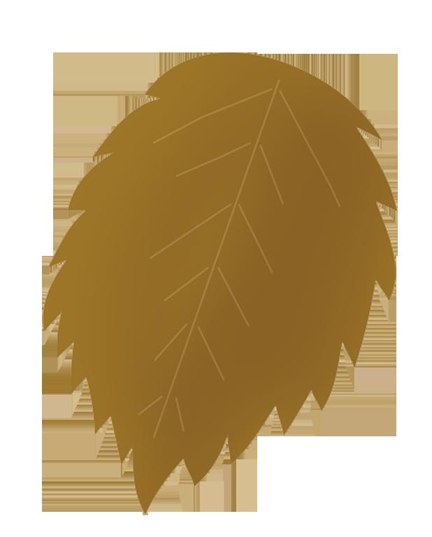 grey brown autumn leaf