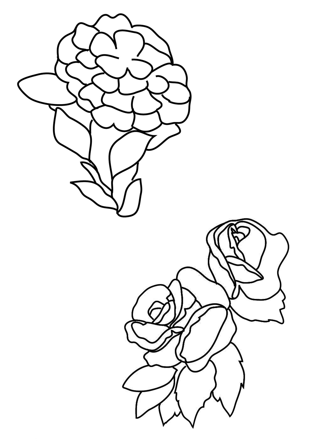two different flower coloring pages