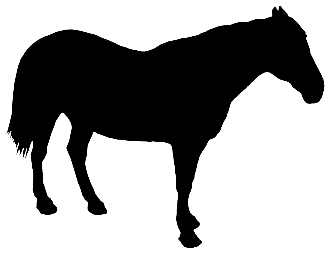 horse standing silhouette