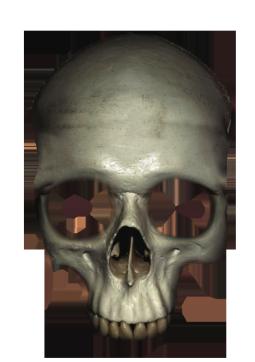 human head skull clipart