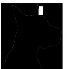 dog silhouette head of big dog