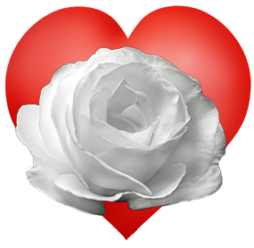 red heart with white rose