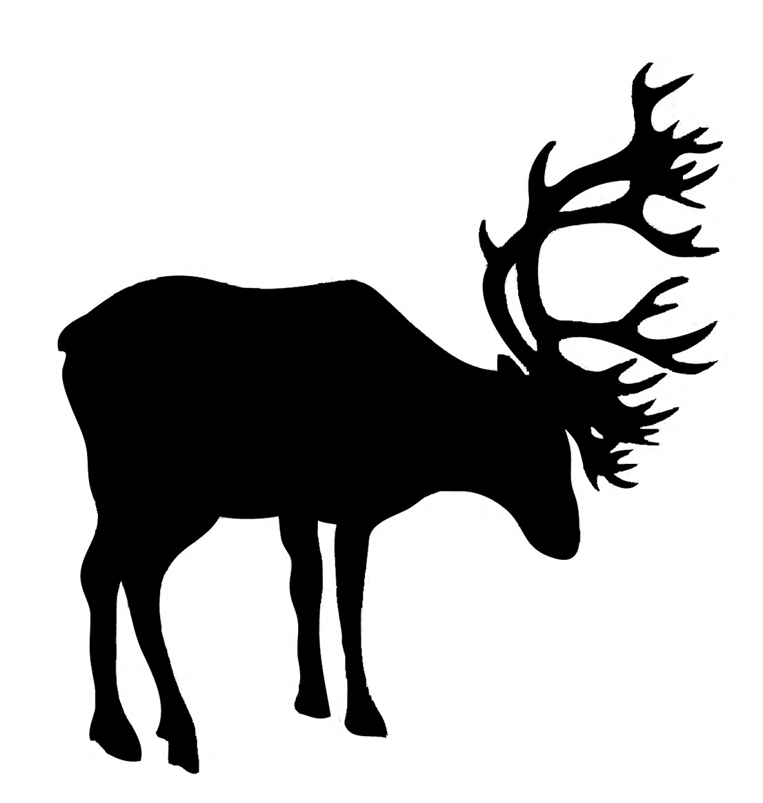 silhouette of red deer stag